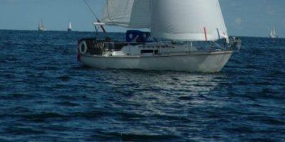 Viking 28 – 1982