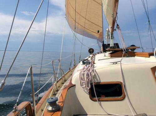 IslandTrader37-Deck