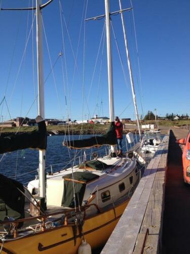 IslandTrader37-Docked-01