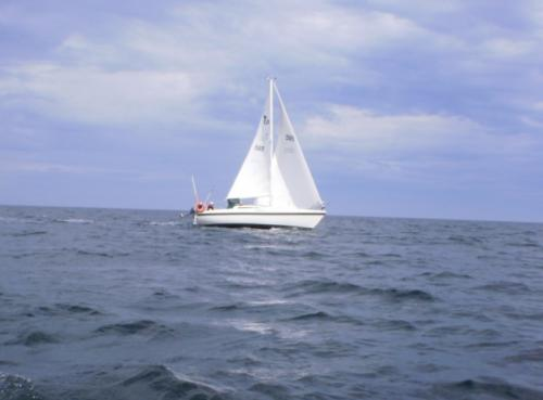 Tanzer 26 - Under Sail